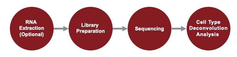 RNA-Seq-service-workflow
